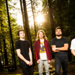 Interview with Redwoods